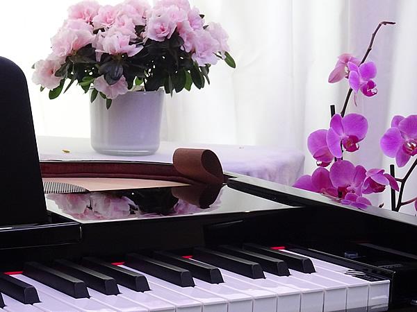 پیانوی دیجیتال دایناتون مدل SGP-600